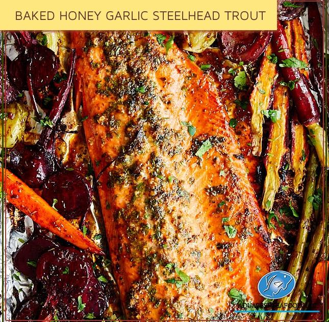 BAKED HONEY GARLIC STEELHEAD TROUT